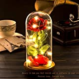 'Beauty and the Beast' Rose Kit, Red Silk Rose and Led Light with Fallen Petals in Glass Dome on Wooden Base for Home Decor Holiday Party Wedding Anniversary
