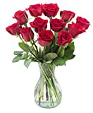 Delivery by Thursday, March 4th Dozen Red Roses in a Free Vase by Arabella Bouquets
