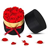 Forever Preserved Fresh Cut Roses, Handmade Eternal Roses in a Box That Last a Year Gift for Her Wedding Birthday Valentines Mothers Day Anniversary (7 Red Roses)