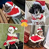 Enjoying Christmas Cat Costume Cat Santa Hat with Christmas Cloak Kitten Costumes Dogs Xmas Outfit with 2 Bells and hairballs, Red