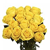 GlobalRose 100 Yellow Roses- Flower Delivery for Mother Day- Lovely Fresh Gift